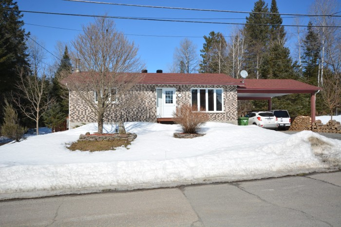 1024, Rue O'Keefe, Mont-Tremblant